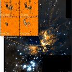 A la recherche de molécules complexes dans la nébuleuse d'Orion